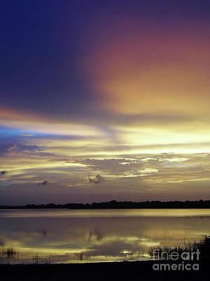 Photograph - Golden Morning by D Hackett