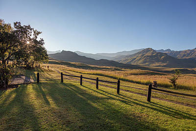 Wall Art - Photograph - Golden Mountains by Pippa Dini