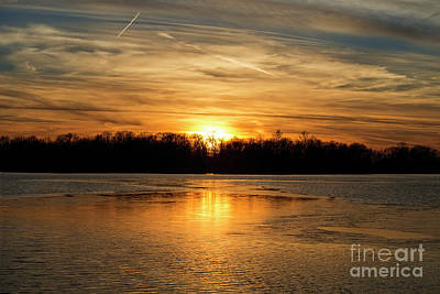 Photograph - Golden Night by David Arment