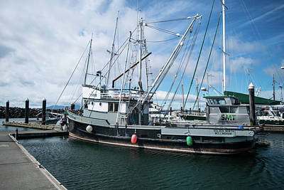 Photograph - Golden North At Squalicum Harbor by Tom Cochran