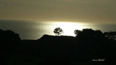 Photograph - Golden Ocean Sunset by Doreen Whitelock