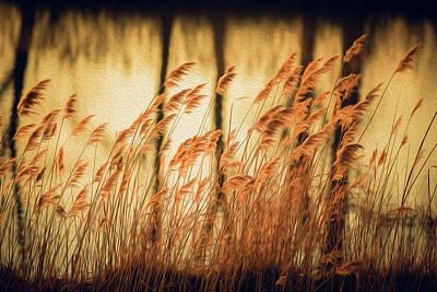 Water Filter Photograph - Golden Oil Paint by Jackie Novak