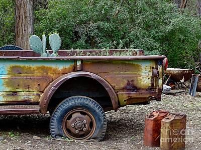 Photograph - Golden Oldie by Deniece Platt