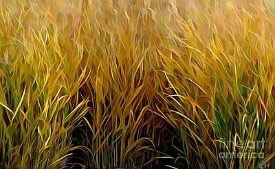 Photograph - Golden Orange Autumn Grasses Melting Colors Effect by Rose Santuci-Sofranko