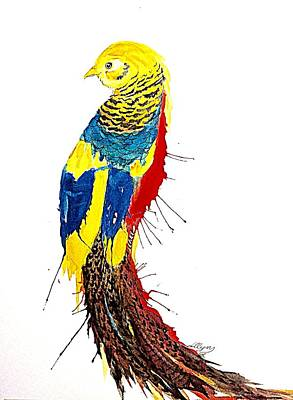 Painting - Golden Pheasant Chinese Pheasant  by Ellen Levinson