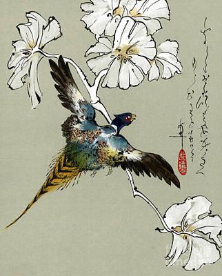 Golden Pheasant Print by Linda Smith