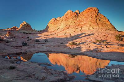 Photograph - Golden Pond by Bill Singleton