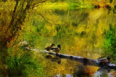 Photograph - Golden Pond by Patricia Strand