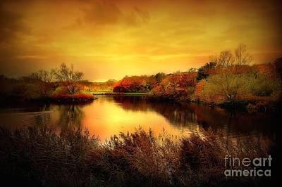 Golden Pond Art Print by Jacky Gerritsen