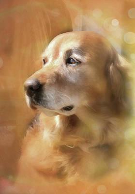 Golden Retriever Digital Art - Golden by Posey Clements