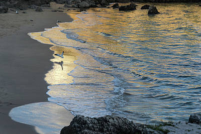 Photograph - Golden Light At Praia Da Rainha - Queens Beach - In Cascais Portugal by Georgia Mizuleva