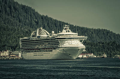 Photograph - Golden Princess  by Timothy Latta