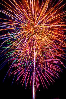 Photograph - Golden Purple Fireworks by Garry Gay