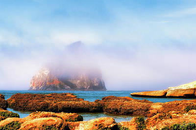 Photograph - Golden Rays Burns Off Fog by Dee Browning