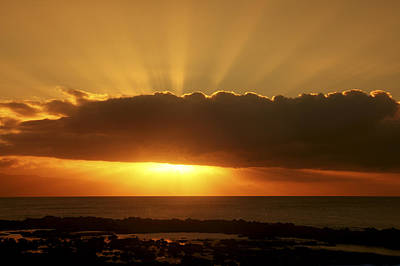 Golden Rays Sunset Art Print by Vince Cavataio - Printscapes