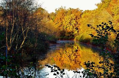 Photograph - Golden Reflections by Buddy Scott