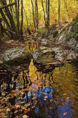 Strandzha Photograph - Golden Reflections by Evgeni Dinev