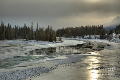 Photograph - Golden Reflections In The Athabasca River by Adam Jewell
