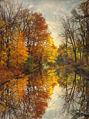 Photograph - Golden Reflections by Jessica Jenney