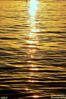 Photograph - Golden Reflections by Lisa Wooten
