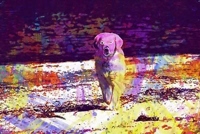 Golden Retriever Digital Art - Golden Retriever Dog Animal Beach  by PixBreak Art
