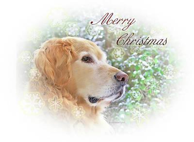 Golden Retriever Photograph - Golden Retriever Dog Merry Christmas Card by Jennie Marie Schell