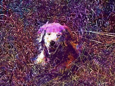 Retrievers Digital Art - Golden Retriever Dog Retriever  by PixBreak Art