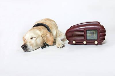 Photograph - Golden Retriever Dog With Headphones Is Asleep Next To The Radio by Jaroslav Frank