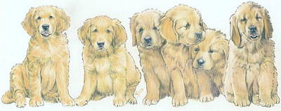 Sporting Mixed Media - Golden Retriever Puppies by Barbara Keith