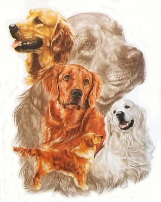 Golden Retriever W/ghost Original by Barbara Keith