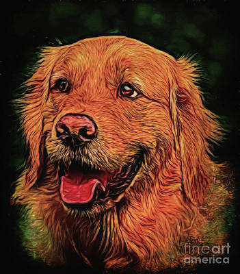 Photograph - Golden Retriever 14018 by Ray Shrewsberry