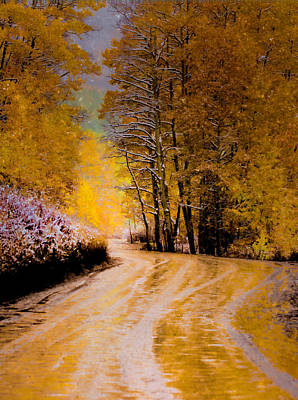 Photograph - Golden Road by Kristal Kraft