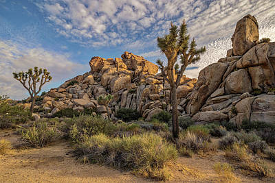 Photograph - Golden Rocks by Peter Tellone