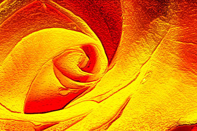 Digital Art - Golden Rose by Francesa Miller