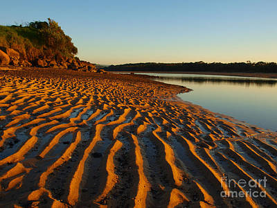 Photograph - Golden Sand by Trena Mara