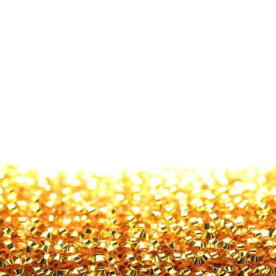 Photograph - Golden Scouring Pad by Stephen Dorsett