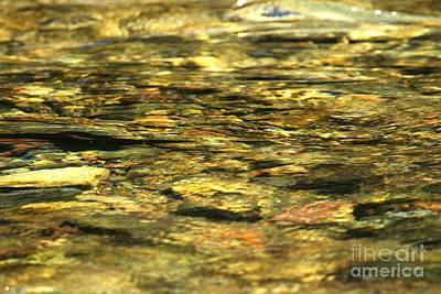 Golden Shimmers Art Print by Adam Jewell
