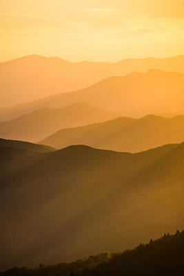 Photograph - Golden Silhouettes  by Shelby Young