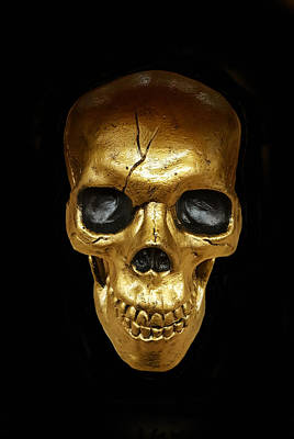 Human Head Photograph - Golden Skull by Art Spectrum