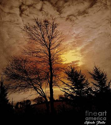 Photograph - Evening Glow by Elfriede Fulda