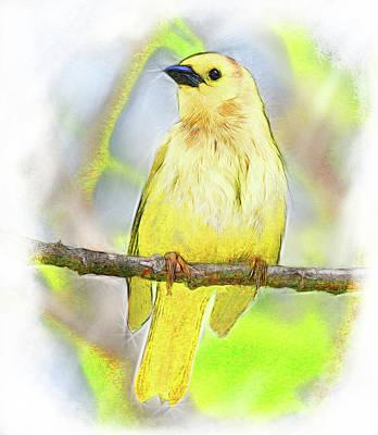 Digital Art - Golden Songbird by Yuichi Tanabe