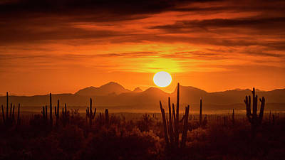 Photograph - Golden Southwest Sunset  by Saija Lehtonen