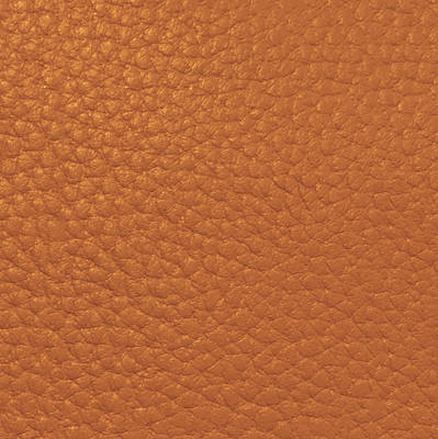 Painting - Golden Sparkle Leather Look Background Texture On Gifts Christmas Holidays Birthday Mom Dad Sister  by Navin Joshi