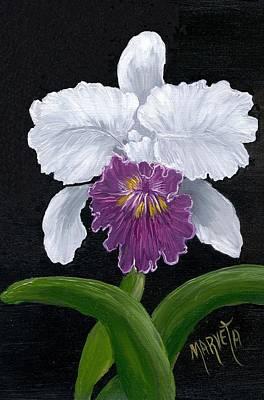 Golden Star Orchid Art Print by Marveta Foutch