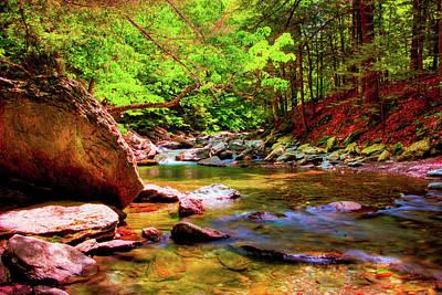 Bash Bish Falls Photograph - Golden Stream by David Hahn
