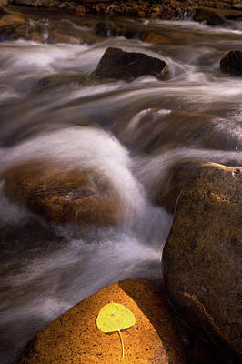 Photograph - Golden Stream by Francesco Emanuele Carucci