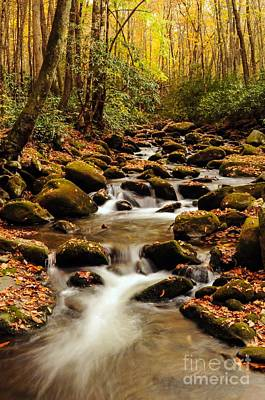 Art Print featuring the photograph Golden Stream In The Great Smoky Mountains by Debbie Green