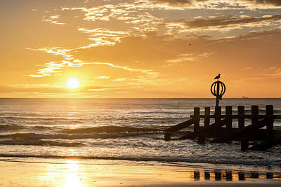 Photograph - Golden Sunrise At Aberdeen Beach by Veli Bariskan