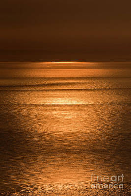 Photograph - Golden Sunrise by Clayton Bastiani