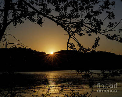 Photograph - Golden Sunrise by Dennis Hedberg
